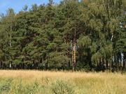 Продам участок ИЖС 14 км От МКАД - Фото 2