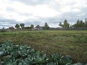 Продам земельный участок с домом в с.Панино - Фото 4