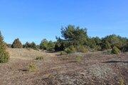 Участок рядом с сосновым лесом, Земельные участки в Гдовском районе, ID объекта - 201199227 - Фото 5