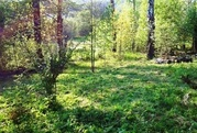 Продажа участка 9 соток на родине Льва Толстого в Ясной Поляне - Фото 2