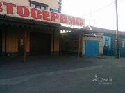 Аренда торгового помещения, Челябинск, Ул. Бажова - Фото 2
