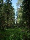 Продажа участка, Садовое товарищество Элена  поселение Клёновское