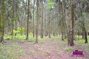 Продается зем.участок 102 сотки, окп «Зори», Новорижское шоссе - Фото 5