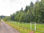 Продаю участок 30 соток в лесу, Дмитровское шоссе - Фото 1
