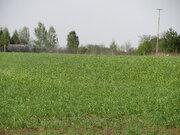 Продам земельный участок в деревне