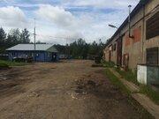Отдельно стоящее здание 1143 м2 с жд тупиком., Продажа складов в Ломоносове, ID объекта - 900242275 - Фото 1