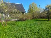 Продается участок под Павловском 15 соток ИЖС с домом на берегу реки - Фото 5