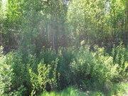 Земельный участок в СНТ Весна - Фото 5