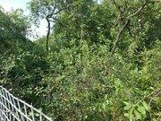 Земельный участок 6 соток в деревне Аникскино Щелковский район - Фото 3