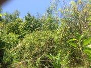 Земельный участок в Сочи с видом на море - Фото 1