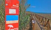 Дом в 200 метрах от пляжа Moncayo, Продажа домов и коттеджей Гвардамар-дель-Сегура, Испания, ID объекта - 502254925 - Фото 26