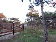 Вы хотели жить рядом с сосновым лесом? Предложение для Вас! - Фото 5