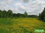 Участок у леса и реки на краю деревни,200 соток, ИЖС. - Фото 2
