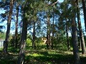 Полность сосновый участок в жилом поселке на Ильинском - Новорижском ш - Фото 3