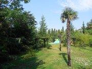Продается земельный участок 88 соток в Ялте - Фото 5