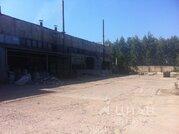 Склад в Владимирская область, Владимир ул. Ноябрьская (8500.0 м) - Фото 2