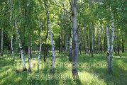 Продается участок. , Милюково д,, Купить земельный участок в Москве, ID объекта - 202322816 - Фото 2