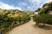 248 000 €, Продаю загородный дом в Испании, Малага., Продажа домов и коттеджей Малага, Испания, ID объекта - 504362518 - Фото 34