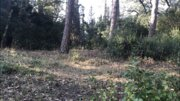 Продажа земельного участка в Симеизе в 5 минутах от моря. - Фото 5