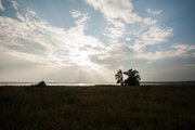 Продажа дома, Аргаяш, Аргаяшский район, Р-н. Аргаяшский - Фото 3