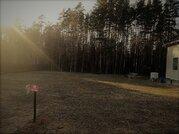 Участки в сосновом лесу от 8 соток - Фото 2