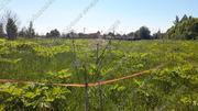 Можайское ш. 100 км от МКАД, Павлищево, Участок 20 сот. - Фото 5