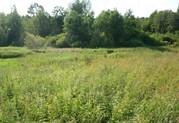 Продажа земельного участка в Валдайском районе, деревня Костково - Фото 1