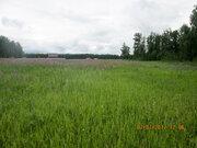 Земельный участок в Долгодеревеском Сосновского района - Фото 3
