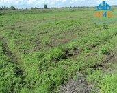 Продаётся участок 27 соток ЛПХ в деревне Тимофеево - Фото 2