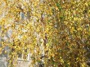 1 950 000 Руб., Московская область, Рузский городской округ, рабочий поселок Тучково, ., Продажа квартир Тучково, Рузский район, ID объекта - 332305648 - Фото 3