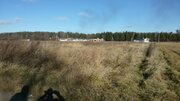 Продам земельный участок 50 соток в д. Пестенькино Муромского района - Фото 1