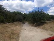 Продается недорогой участок в поселке Кацивели в окружении леса - Фото 5