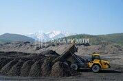 Действующий бизнес по добыче золота - Фото 2