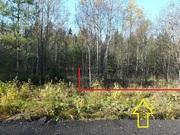Участок 12 сот на лесной поляне, Таширово, 15 мин до ж/д станции - Фото 5