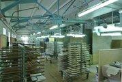 Продажа производства 3332.6 м2, Продажа производственных помещений в Медыни, ID объекта - 900675322 - Фото 12
