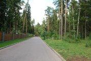 Великолетный сосновый участок в элитном поселке - Фото 5