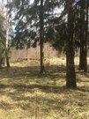 Участок 57 сот, ИЖС, нии Радио, Минское ш, 25 км, все коммуникации - Фото 2