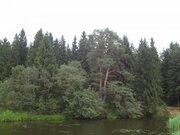 Участок с выходом в р.Волга, д.Нутромо 128 сот, газ, эл-во - Фото 4