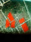 Продажа участка, Волгоград, Катунская