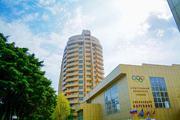 1 комнатная квартира в Сочи - Фото 2