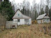 Продается участок в СНТ рядом с г.Пушкино - Фото 4
