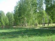 Земельные участки в Рязанской области