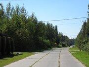 """Роскошный лесной участок 12 соток, Минское шоссе, """"зелёная роща"""", охр. - Фото 2"""