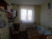 4-к Гущина, 195, Купить квартиру в Барнауле по недорогой цене, ID объекта - 321863380 - Фото 3
