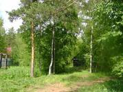 Высокий участок в стародачном месте 50 км от Москвы - Фото 3