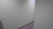 Нежилое помещение 56,2 кв.м.
