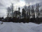 Лесной участок 15 соток, магистральный газ. СНТ. - Фото 5