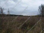 Горьковское ш. 120 км от МКАД, Пекша, Участок 1850 сот. - Фото 3