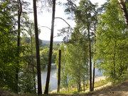 Прекрасный участок у леса на берегу Москвы-реки.
