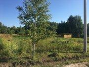 Новое Кузьмищево 8,5 сот - Фото 3